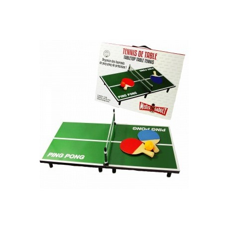 JEU DE TENNIS DE TABLE